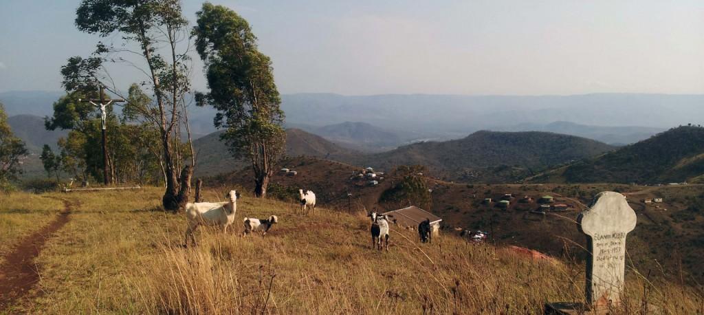 Blick über Mbongolwane