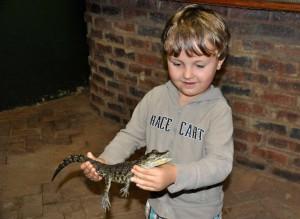 Handtaschen-Krokodil
